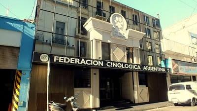 Federación-cinologica-Argentina-min