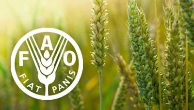 lista de la FAO